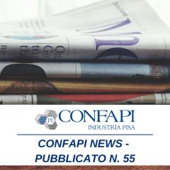 Confapi News - Numero 55